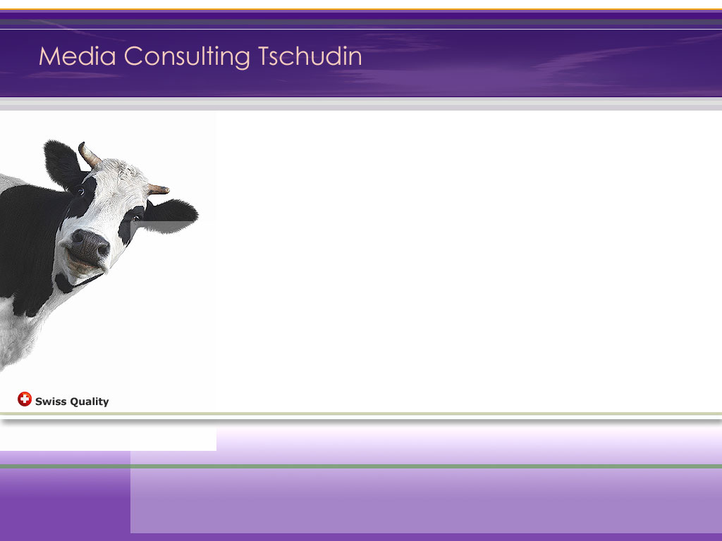 Medien Consulting Tschudin Basel  Werbung